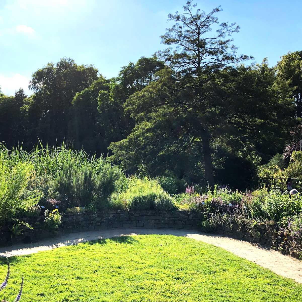 Gärten mit Gehölzen gestalten